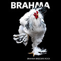 Brahma Breeders Rock T-shirt Print by Sigrid Van Dort
