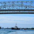 Bramble Under The Blue Water Bridge by Randy J Heath