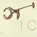 Branding Iron by Elizabeth Johnson