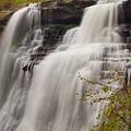 Brandywine Falls IIi by Beth Collins