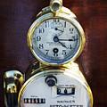 Brass Auto-meter Speedometer by Jill Reger