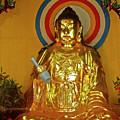 Brass Buddha Emei by Roberta Bragan