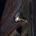 Brass Door Knob I by Henri Irizarri