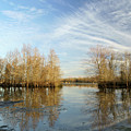Brazos Bend Winter Reflections by Katrina Lau