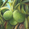 Breadfruits St Kitts by James  Mingo