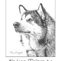 Breed Poster Alaskan Malamute by Tim Wemple