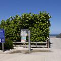 Brevard County Florida Beaches by Allan  Hughes
