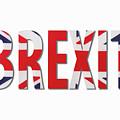 Brexit by Diane Macdonald