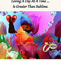 Brian Exton Pink Tulips  Bigstock 164301632  231488 by Mitchell Watrous