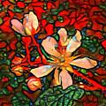 Briar Rose by Amanda Moore
