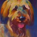 Briard Puppy by Kaytee Esser