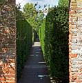 Brick Arch by Alan Pickersgill