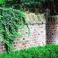 Brick Wall by Donna Bentley