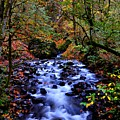 Bridal Veil Creek by Noah Cole