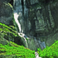 Bridal Veil Falls Canvas 1 by Steve Ohlsen