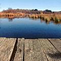 Bridge - Mendon Ponds by Peter J Sucy