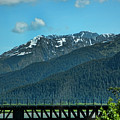 Bridge Alaska Rail  by Chuck Kuhn