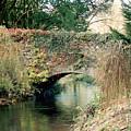 Bridge At Blarney Castle by Lauri Novak