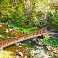 Bridge At The Falls by Judy  Waller