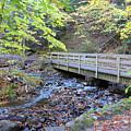 Bridge by Brenda Ackerman