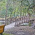 Bridge  by Chauncy Holmes