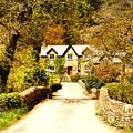 Bridge Cottage by Richard Denyer