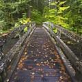 Bridge In A Park by Craig Tuttle