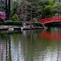 Bridge In Bamboo Garden by Rand Wall