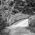 Bridge In The Path I by Lori Lynn Sadelack