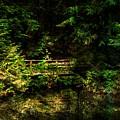 Bridge In The Woods by Bill Howard
