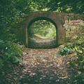 Bridge In The Woods by James Billings