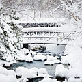 Bridge In Winter Snow by Francesa Miller
