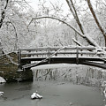 Bridge In Winter by Timothy Johnson