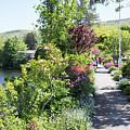 Bridge Of Flowers Walkway by Morgain Bailey