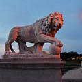 Bridge Of Lions 2 by Shelley Wood