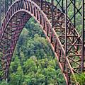 Bridge Of Trees by Rick Locke
