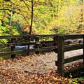 Bridge Over A Creek In The Fall by Jill Lang