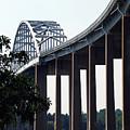 Bridge Over Delaware Chesapeake Canal by Skip Willits