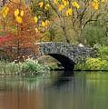 Bridge Over Peaceful Water by Autumn Scenes