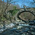 Bridge Over Peaceful Waters - Il Ponte Sul Ciae' by Enrico Pelos