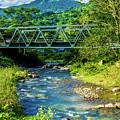 Bridge Over Tropical Dreams by Donald Carr