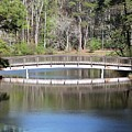 Bridge Reflection by Gayle Miller