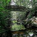 Bridge Reflections by Allen Nice-Webb