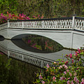 Bridge Reflections by James Woody