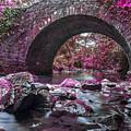 Bridge River by Sebastien Coell