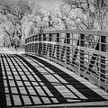 Bridge Shadows by Aaron Hill