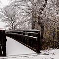 Bridge To Grandma's House by Randy Sylvia