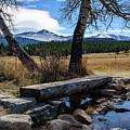 Bridge To Long's Peak by Paul Moore