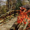 Bridge To New Adventures by Allen Nice-Webb