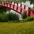 Bridge To Nowhere by Mindy Newman